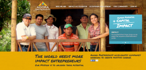 Companies such as Agora Partnerships aim to give entrepreneurs in the developing world access to knowledge, networks and capital.